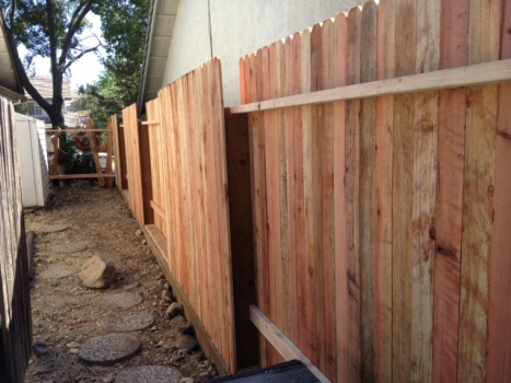 Fence up, side view