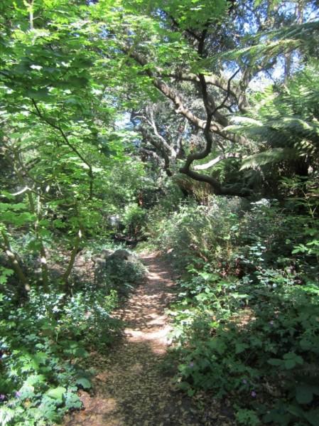 path1.sanfrancisco